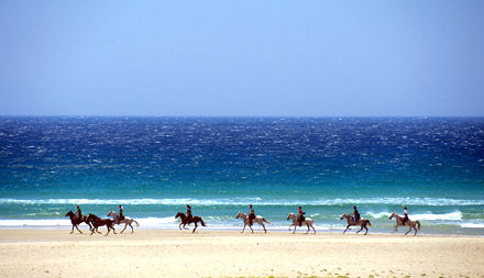 Horse riding on the beach in the Algarve - Savile Row Travel