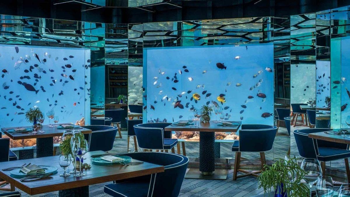 Maldives Anantara Kihavah SEA Underwater Restaurant (1)