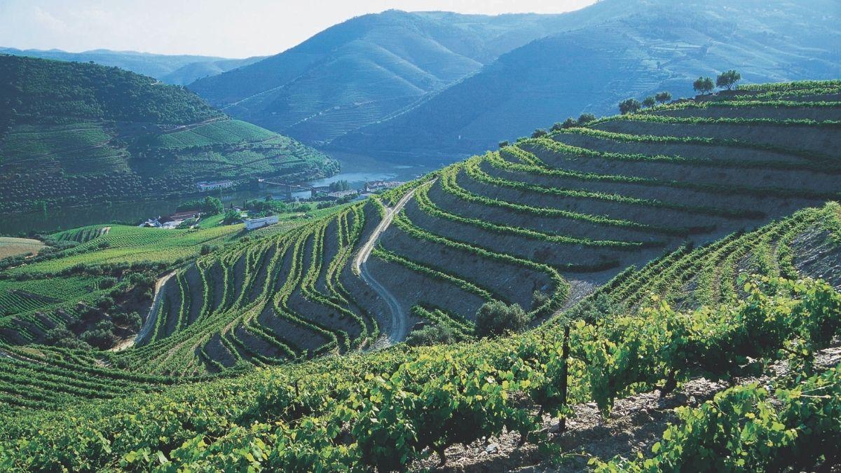 Douro Valley Portugal