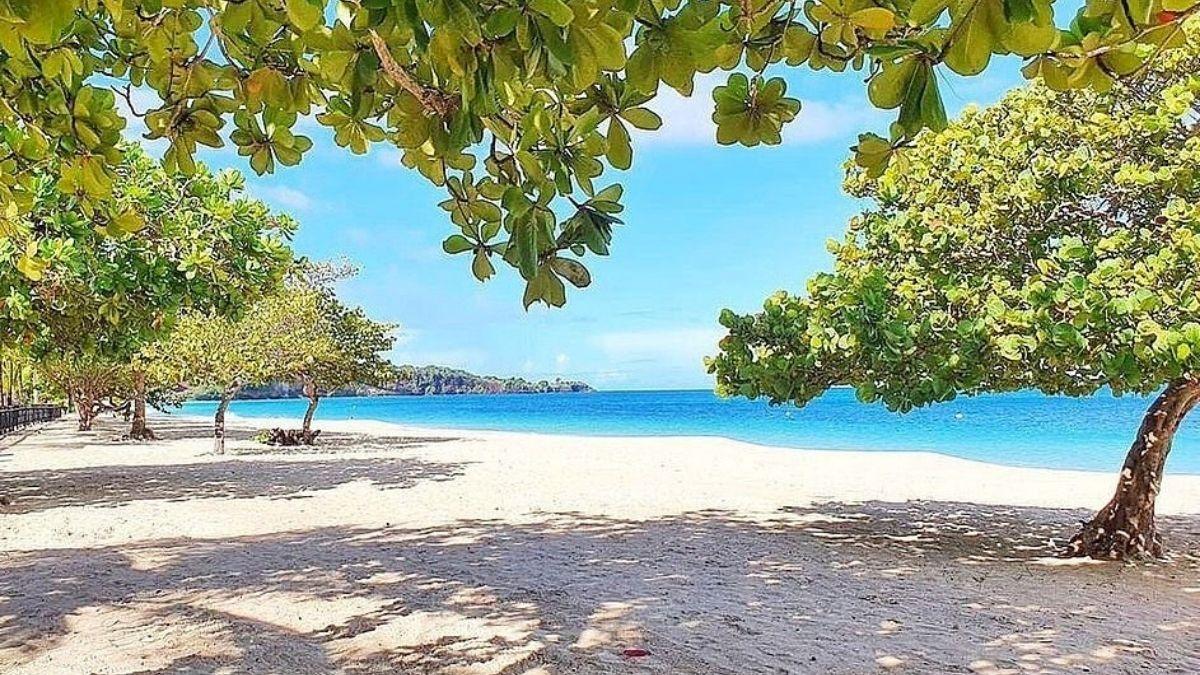Mount Cinnamon Grenada Great Anse Beach